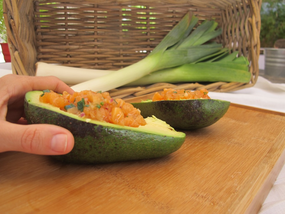 tartaro, abacate, tartaro de salmão e abacate