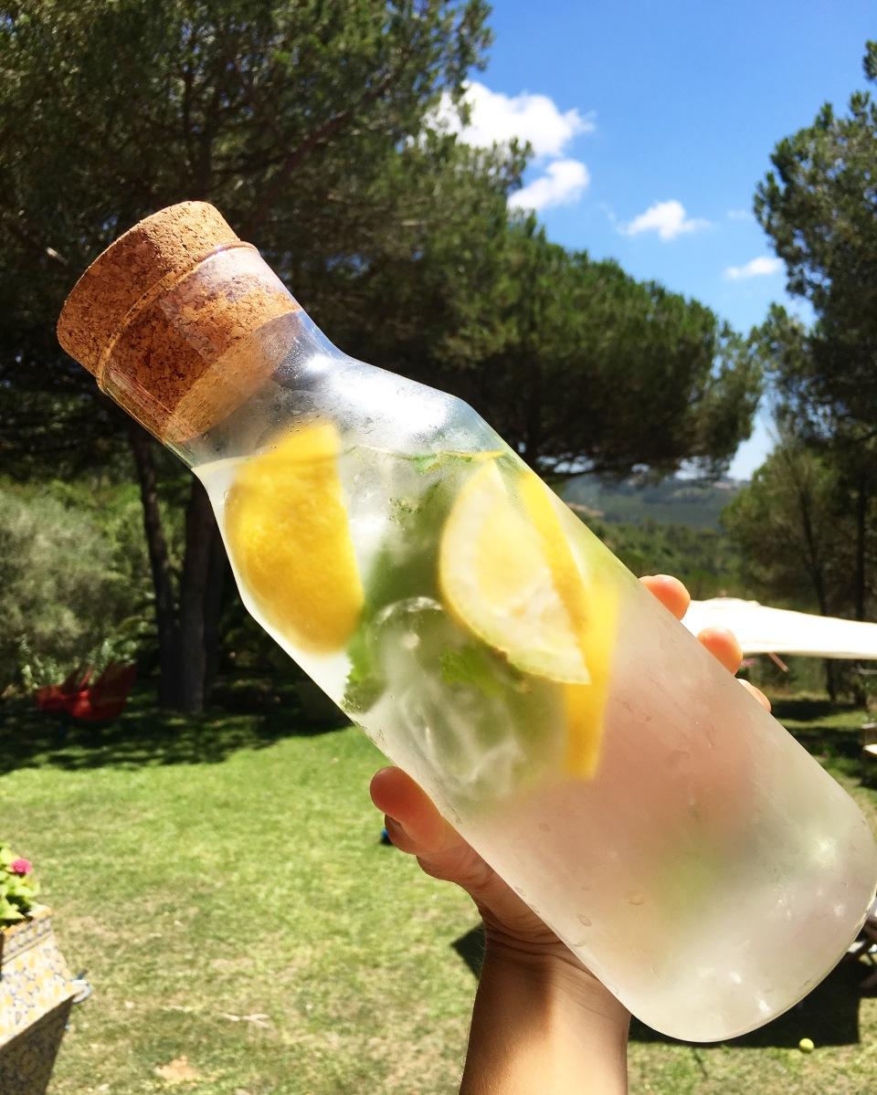 Àgua detox de limão e hortelã